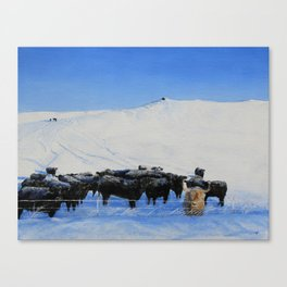 One in a mixed herd Canvas Print