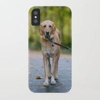 mickey iPhone & iPod Cases featuring MICKEY by Jen Grantham Photography