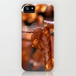 Golden February iPhone Case