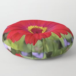 Red zinnia - blazing ring of fire Floor Pillow