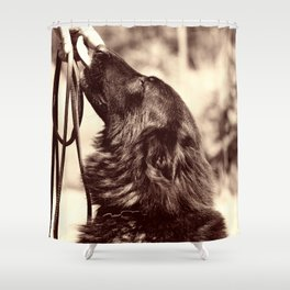 The love of a dog to man Shower Curtain