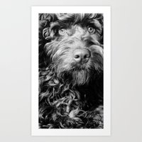 harry Art Prints featuring HARRY by PRE Media