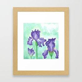 Lavender Irises Framed Art Print