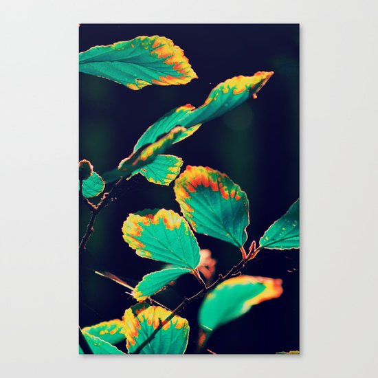 #185 Canvas Print