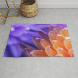 Flower Sunset | cute pastel flower, peach flowers, orange floral pattern, pretty petals, macro Rug