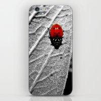ladybug iPhone & iPod Skins featuring Ladybug by Derek Fleener