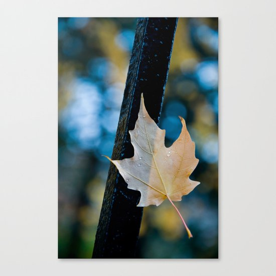 'PERSEVERENCE' Canvas Print