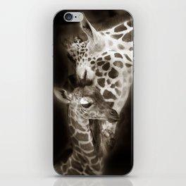 Baby Giraffe and Mother iPhone Skin
