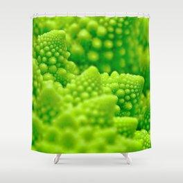 Macro Romanesco Broccoli Shower Curtain