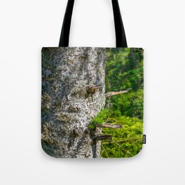 Tree Trunk with short thick Branch Stumps Tote Bag