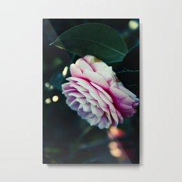 Pink Spring Magic Metal Print
