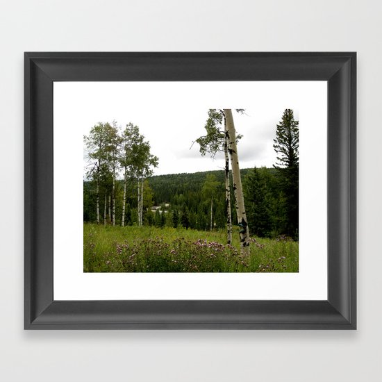 Spring in WaterValley Framed Art Print