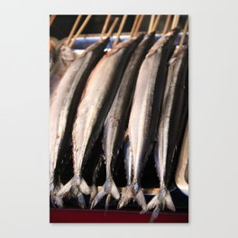 Fish Stick Canvas Print