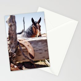 Horsehoe Blur Stationery Cards