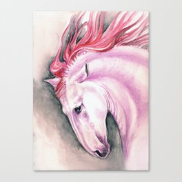 Pink Andalusian Mustang Canvas Print
