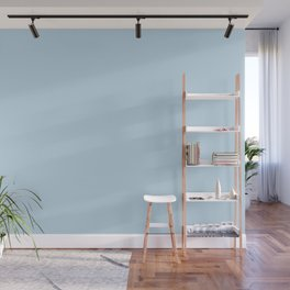 Dunn and Edwards 2019 Curated Colors Island View (Pastel Baby Blue) DE5848 Solid Color Wall Mural