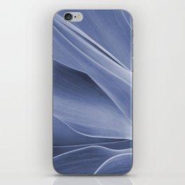 Blue Agave Attenuata iPhone Skin