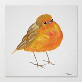 Tangerine Bird Canvas Print