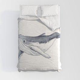 Baby humpback whale (Megaptera novaeangliae) Comforters