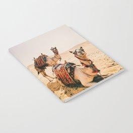 Camels Notebook