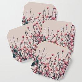 Pastel Magnolia Coaster