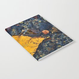 Heart of Nature Notebook