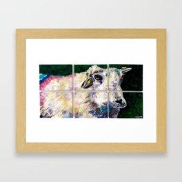 Colorful Dingle Sheep Framed Art Print