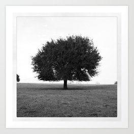 TREE OF LIFE (ORIGINAL PHOTOGRAPHY) Art Print