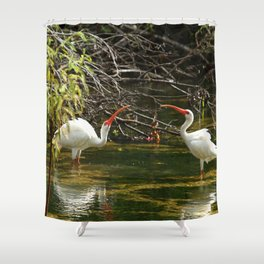 Ibis Dating Place Shower Curtain