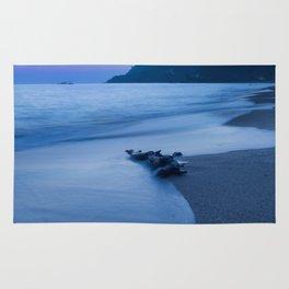 Sunset coast Rug