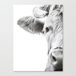 Highlander I Canvas Print