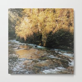Vintgar Gorge Metal Print