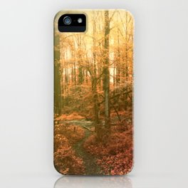 Fall in Kentucky, USA iPhone Case