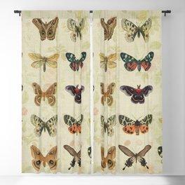Moths & Butterflies Blackout Curtain