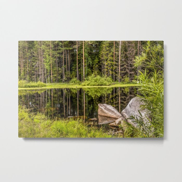Quiet Forest lake Metal Print