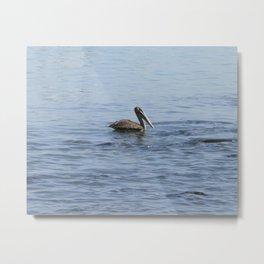 pelican on the water Metal Print