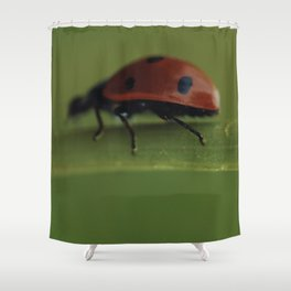 Ladybird on a Flower, macro photography, home, still life, fine art, animal love, nature photo Shower Curtain
