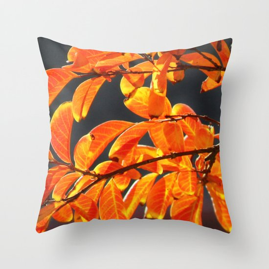 last days of fall Throw Pillow