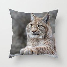 Young lynx portrait Throw Pillow