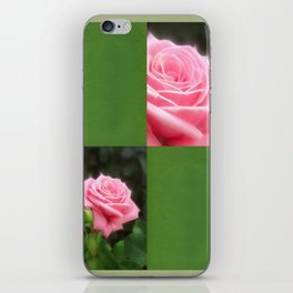 Pink Roses in Anzures 3 Blank Q5F0 iPhone Skin