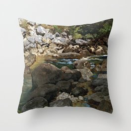 Carl Schuch Mountain Stream with Boulders Throw Pillow