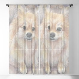 Pomeranian Watercolor Pom Puppy Dog Painting Sheer Curtain