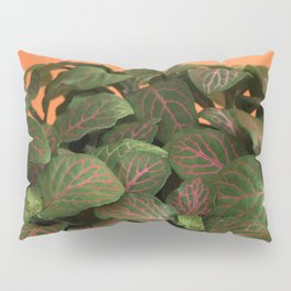Fittonia Pillow Sham