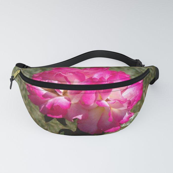 Beautiful Rainbow Sherbet Rose, Single Rose, Pink Flower Fanny Pack