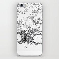 A Tree iPhone & iPod Skin