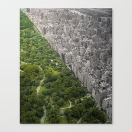 Man vs. Wild Canvas Print