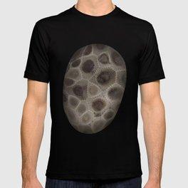 Petoskey Stone T-shirt