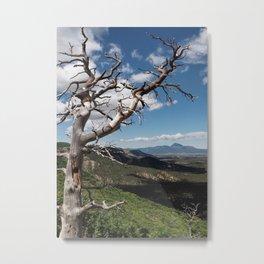 Mesa Verde Metal Print
