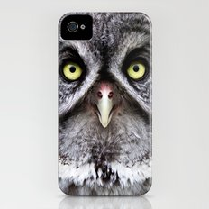 Great Gray Owl Slim Case iPhone (4, 4s)
