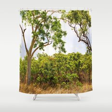 Eucalyptus trees in the bush Shower Curtain